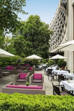 82483773-H1-Sophia's_at_The_Charles_Hotel_6527